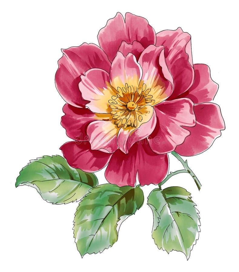 Flor vermelha ilustração stock