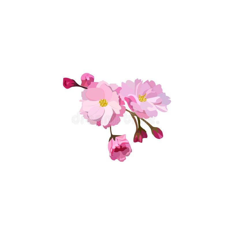 Flor vermelha da cereja ilustração do vetor