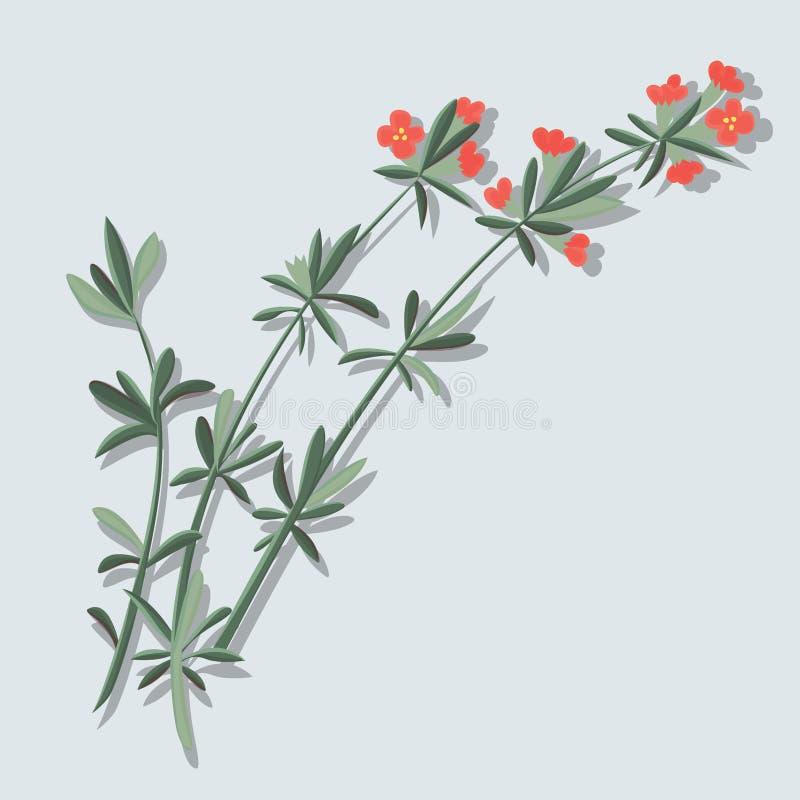 Flor vermelha da flor no vetor da ilustração do ícone do ramo ilustração stock
