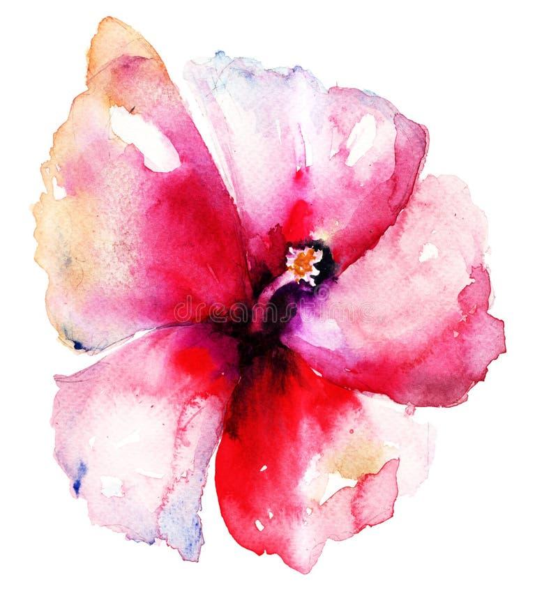 Flor vermelha do hibiscus ilustração do vetor