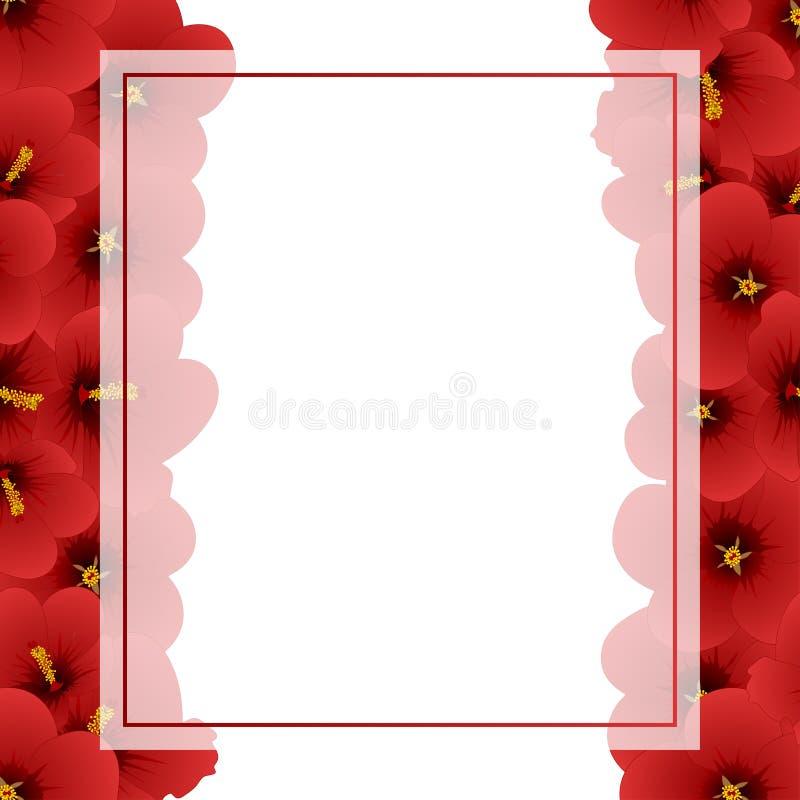 Flor vermelha do hibiscus - Rosa de Sharon Banner Card Border Ilustração do vetor ilustração stock