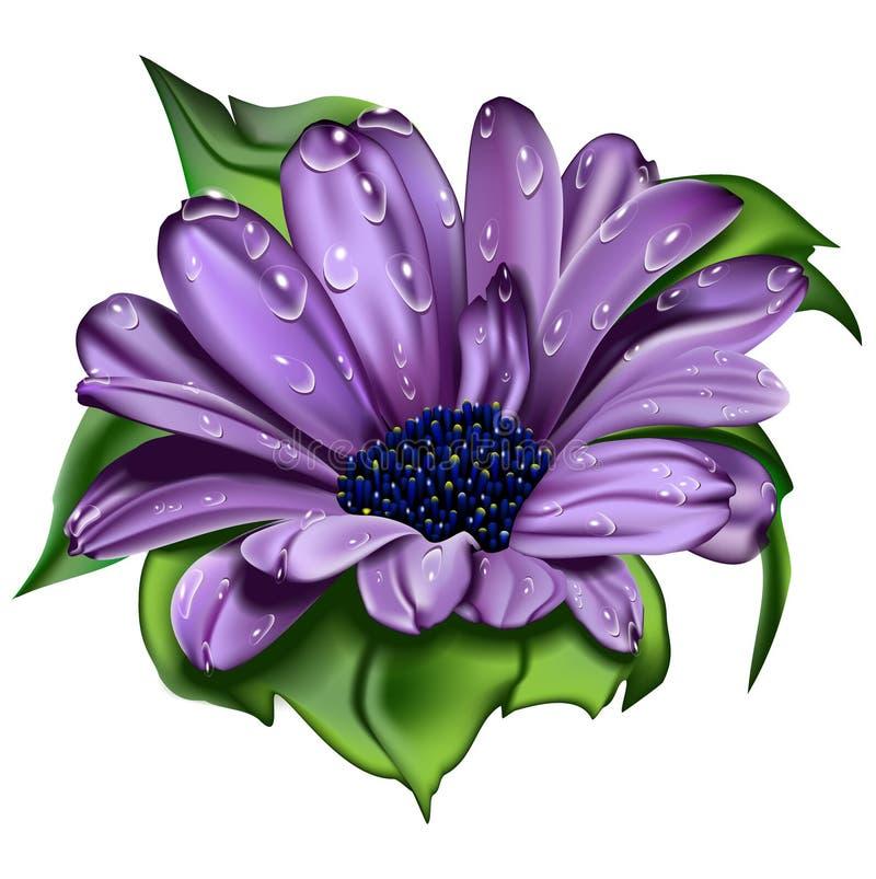 Flor violeta bonita ilustração do vetor