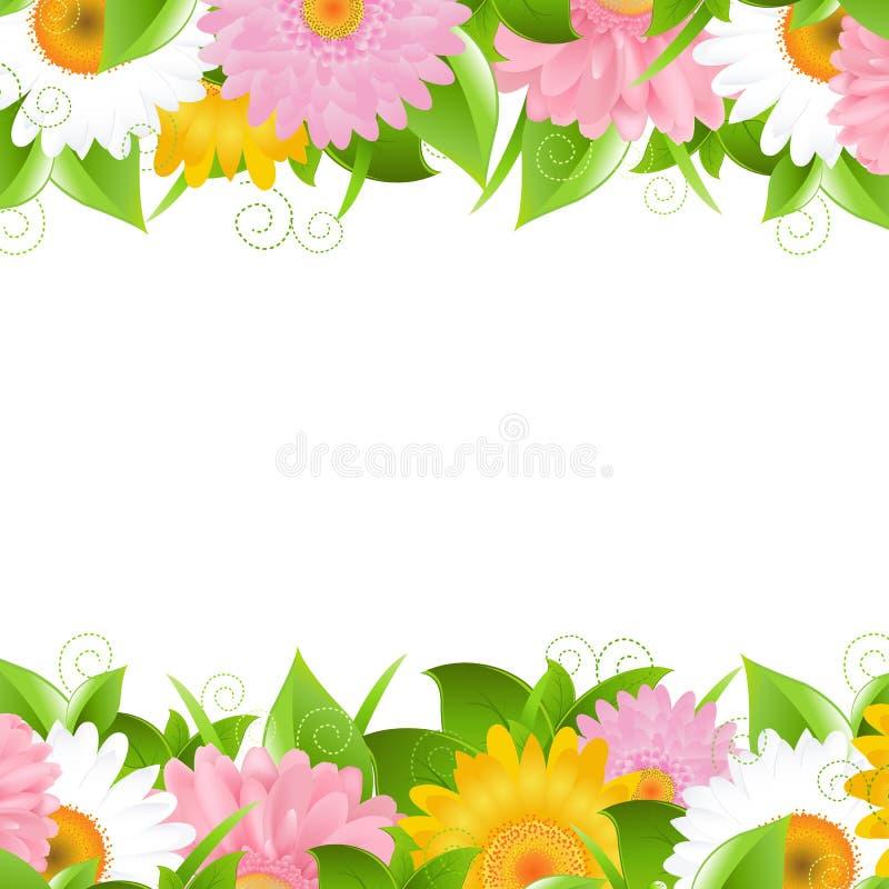 Flor y frontera de las hojas libre illustration