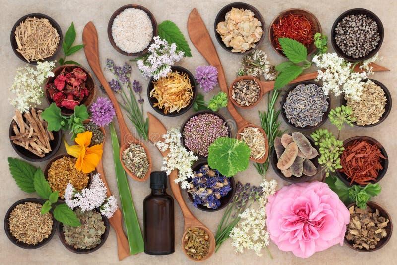 Flor y Herb Selection fotografía de archivo libre de regalías