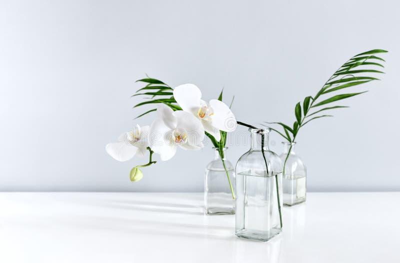 Flor y hojas de palma blancas de la orquídea en floreros en la sobremesa foto de archivo