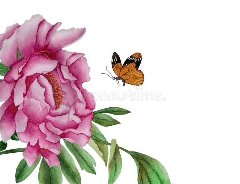 Flor y mariposa de la peonía libre illustration