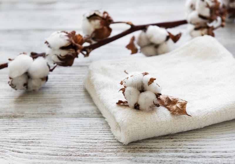 Flor y toalla del algodón foto de archivo