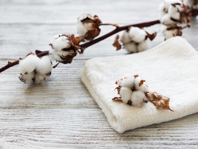 Flor y toalla del algodón fotografía de archivo libre de regalías