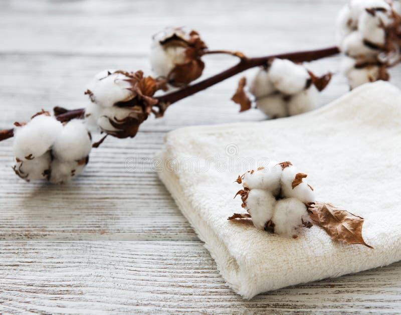 Flor y toalla del algodón fotografía de archivo
