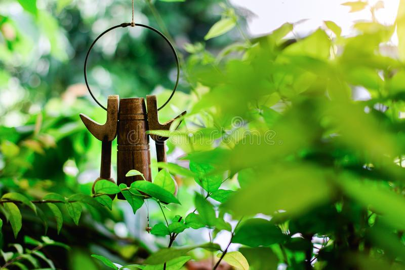 flora, boom, natuurlijk blad, kleur, groen rood, bloem, bloemen, aard, achtergrond, tuin, schoonheid, mooie installatie, stock foto