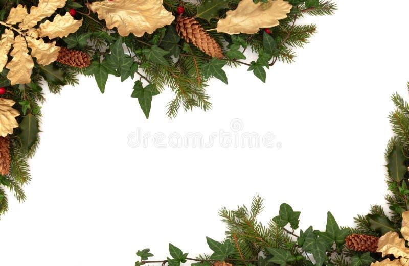 Flora e fauna di inverno