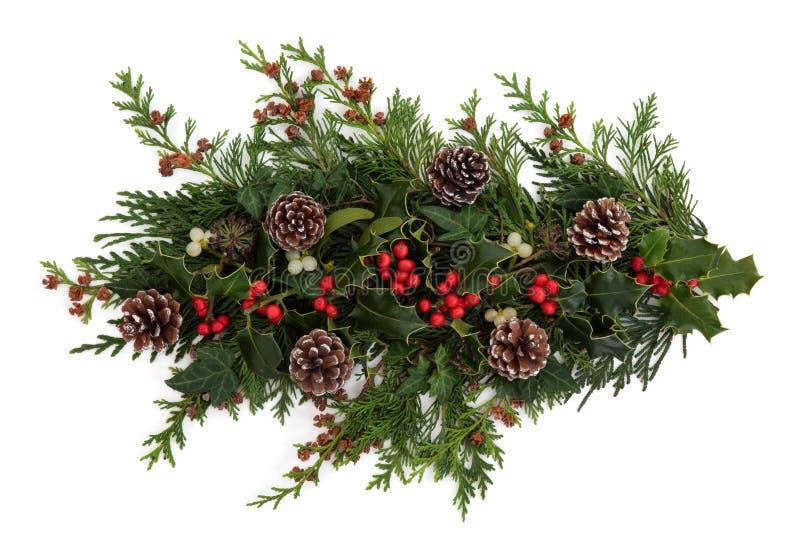 Flora E Fauna Do Inverno Imagem de Stock