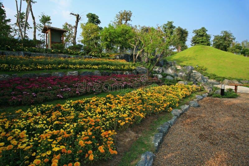 Flora Expo real, Chiang Mai, Tailândia fotografia de stock royalty free