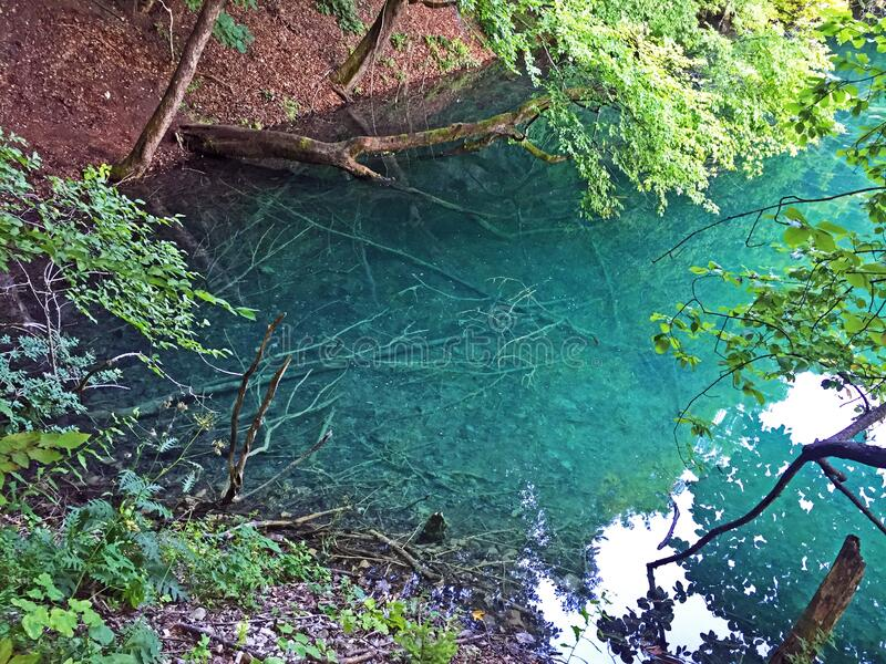 Flora and fauna of Plitvice Lakes National Park or nacionalni park Plitvicka jezera, UNESCO natural world heritage - Plitvica royalty free stock photos