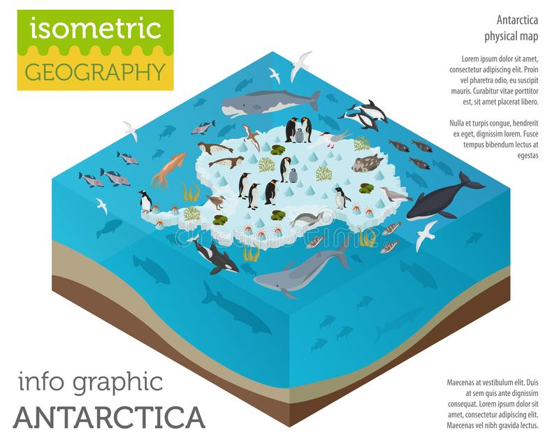 A flora isométrica e a fauna de 3d a Antártica traçam elementos Animais, b ilustração royalty free