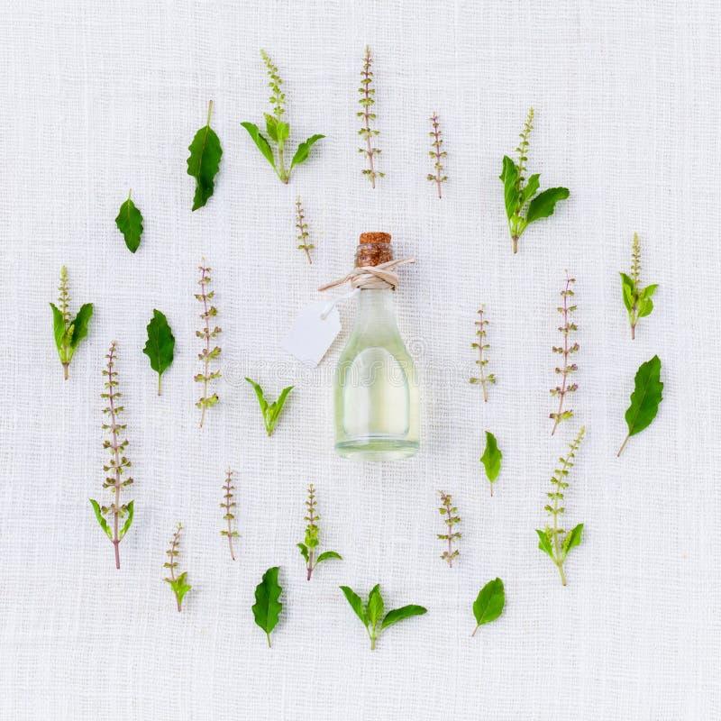 Flora, Leaf, Plant, Herb Free Public Domain Cc0 Image