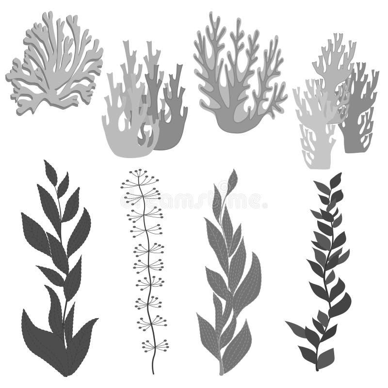 Flora marina disegnata a mano illustrazione vettoriale