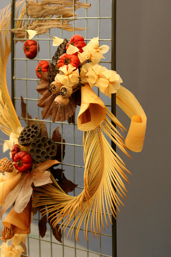 Flora secada y fauna foto de archivo libre de regalías
