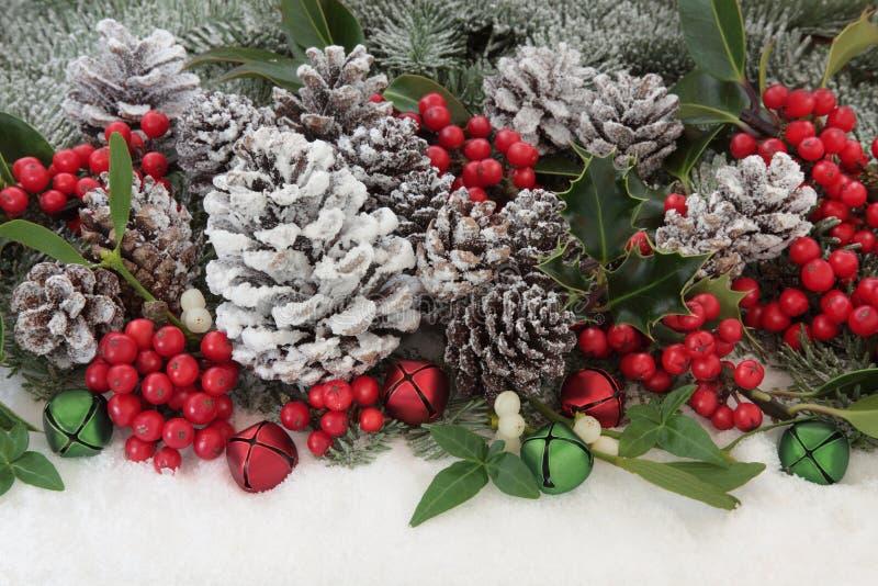 Flora tradizionale di Natale fotografia stock libera da diritti