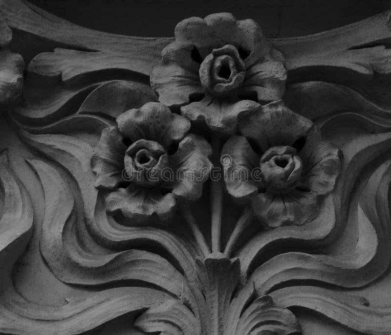 Floración floral del trío imágenes de archivo libres de regalías