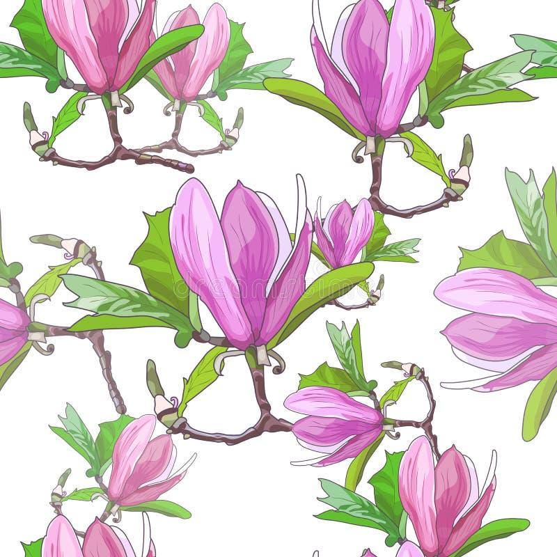 Floraciones de la magnolia impresión stock de ilustración