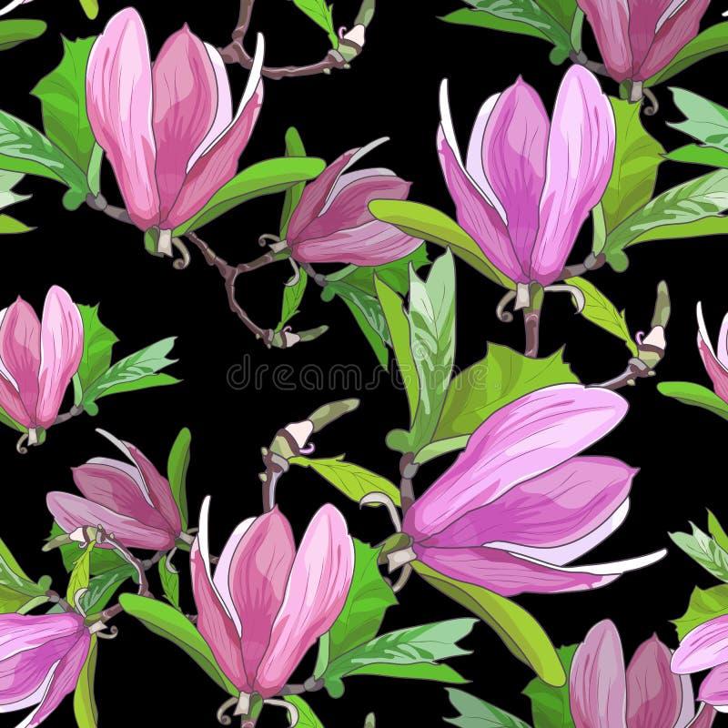 Floraciones de la magnolia Modelo inconsútil stock de ilustración