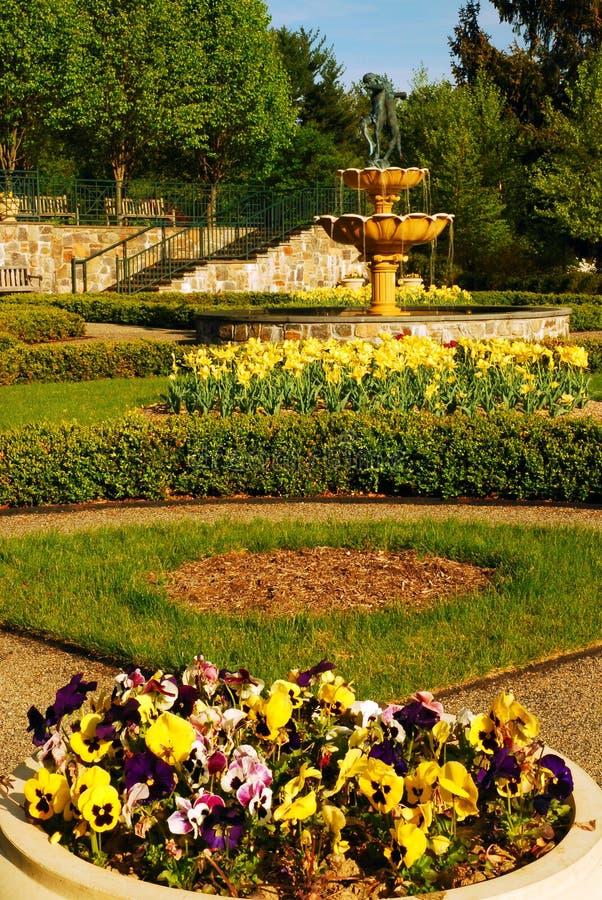 floraciones de la primavera foto de archivo libre de regalías
