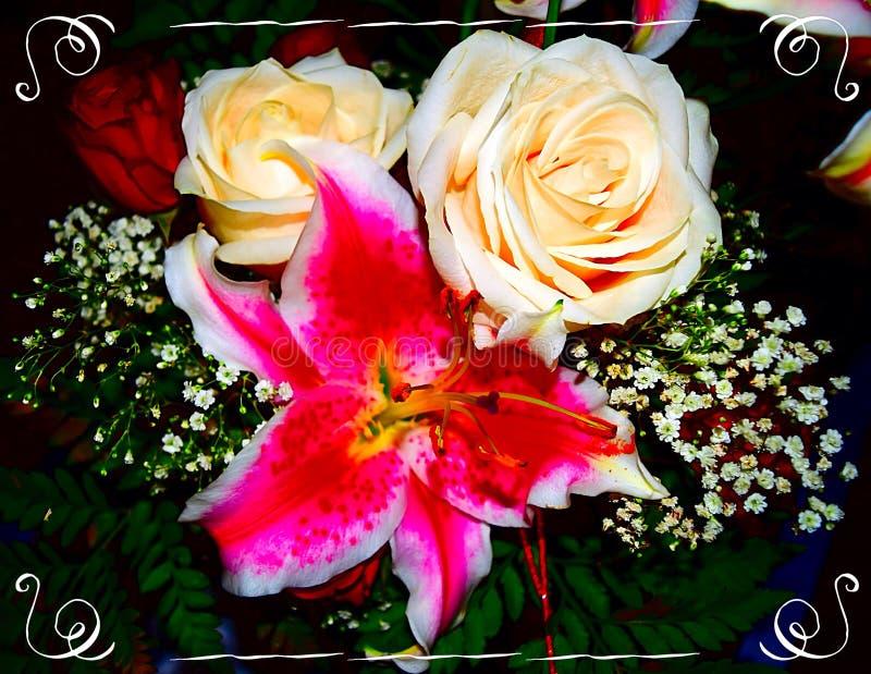 Floraciones del verano foto de archivo