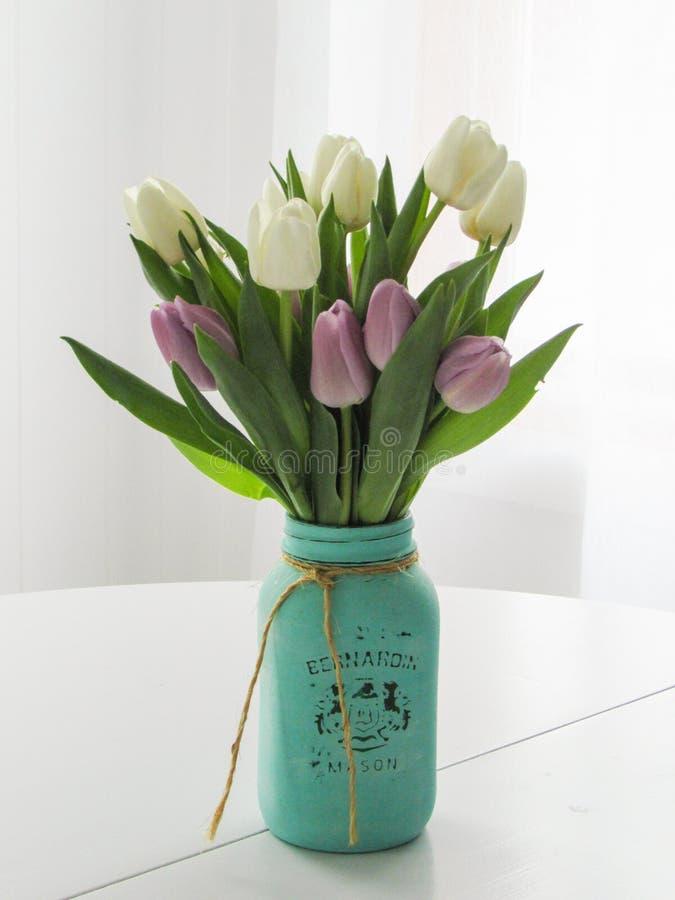 Floraciones interiores con el fondo blanco fotos de archivo