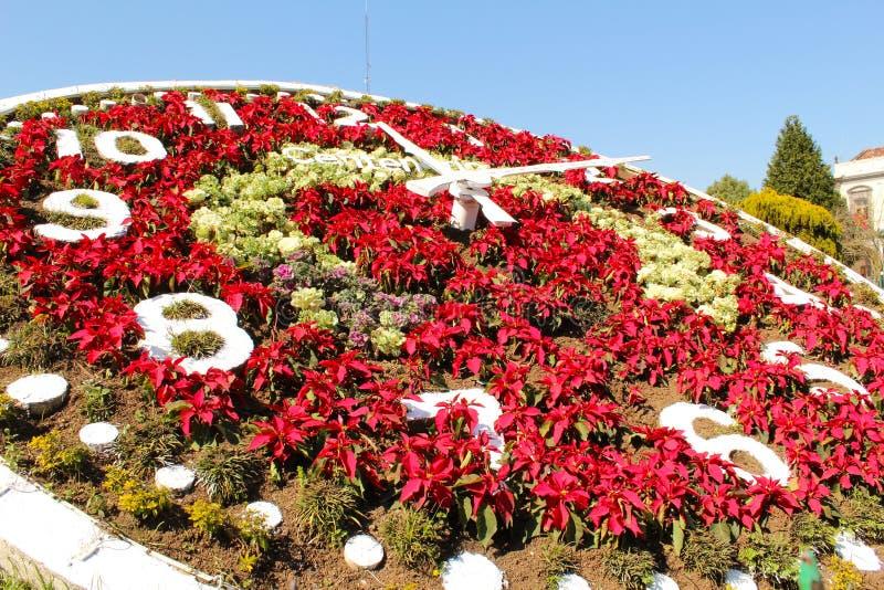 Floral ρολόι στο Μεξικό Μαγική περιοχή πόλεων και παγκόσμιων κληρονομιών στοκ εικόνες