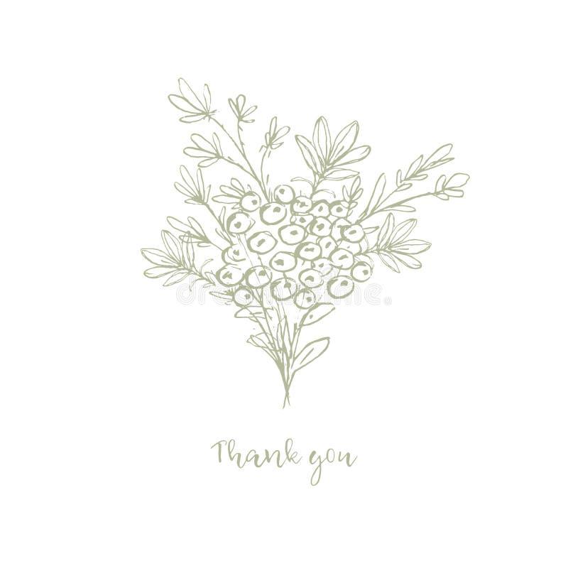 Floral πράσινη διακοσμητική διανυσματική απεικόνιση χρώματος Σας ευχαριστούμε κομψή Floral διανυσματική κάρτα ελεύθερη απεικόνιση δικαιώματος