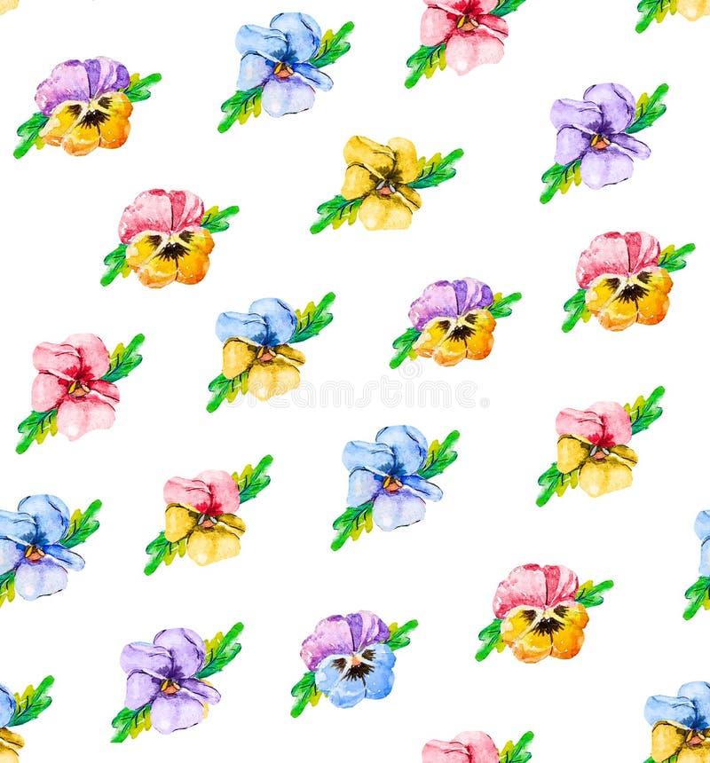 Floral άνευ ραφής σχέδιο Watercolor, wildflowers, pansies, πορφυρά, μπλε, κόκκινα και ρόδινα λουλούδια Μια φωτεινή θερινή βοτανικ διανυσματική απεικόνιση