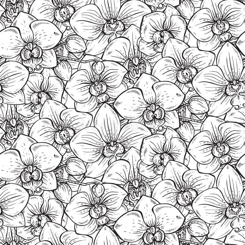 Floral άνευ ραφής σχέδιο με συρμένα τα χέρι λουλούδια ορχιδεών απεικόνιση αποθεμάτων