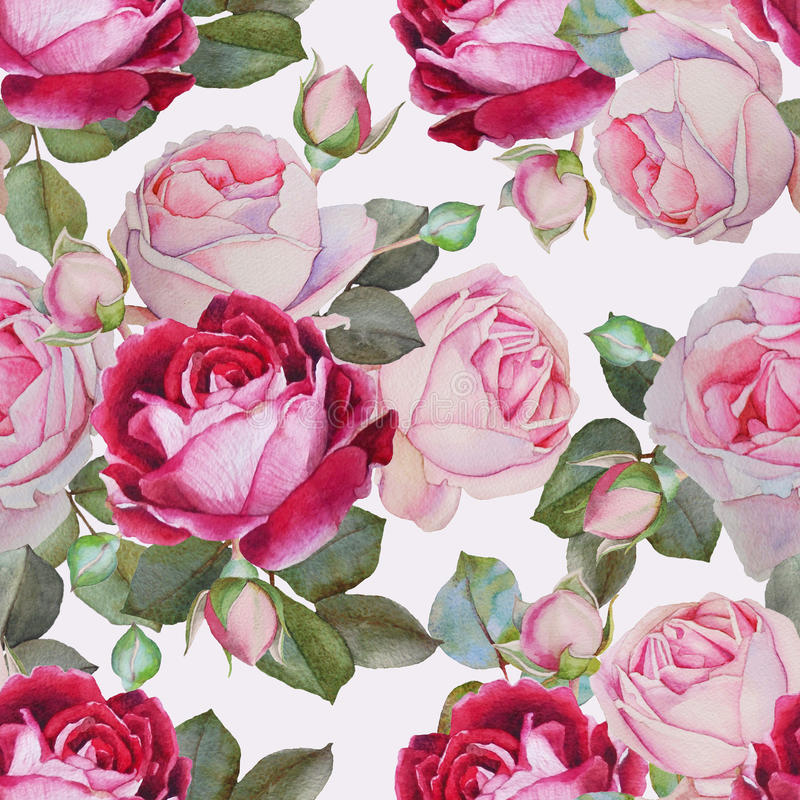Floral άνευ ραφής σχέδιο με τα ρόδινα και πορφυρά τριαντάφυλλα watercolor στοκ εικόνα με δικαίωμα ελεύθερης χρήσης