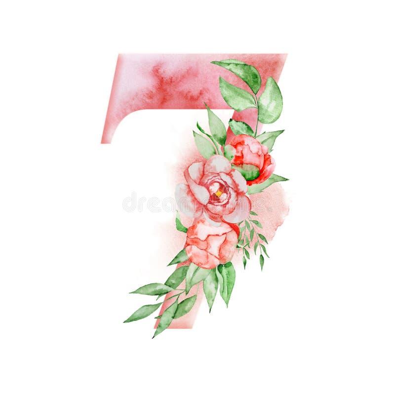 Floral αλφάβητο watercolor Watercolor αριθμός 7 με τα λουλούδια peonies και leves Ρομαντικό μονόγραμμα διανυσματική απεικόνιση