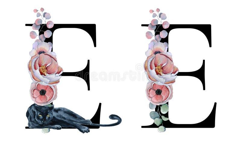 Floral αλφάβητο watercolor Αρχικό σχέδιο γραμμάτων Ε μονογραμμάτων με συρμένο το χέρι peony και λουλούδι anemone και μαύρος πάνθη ελεύθερη απεικόνιση δικαιώματος