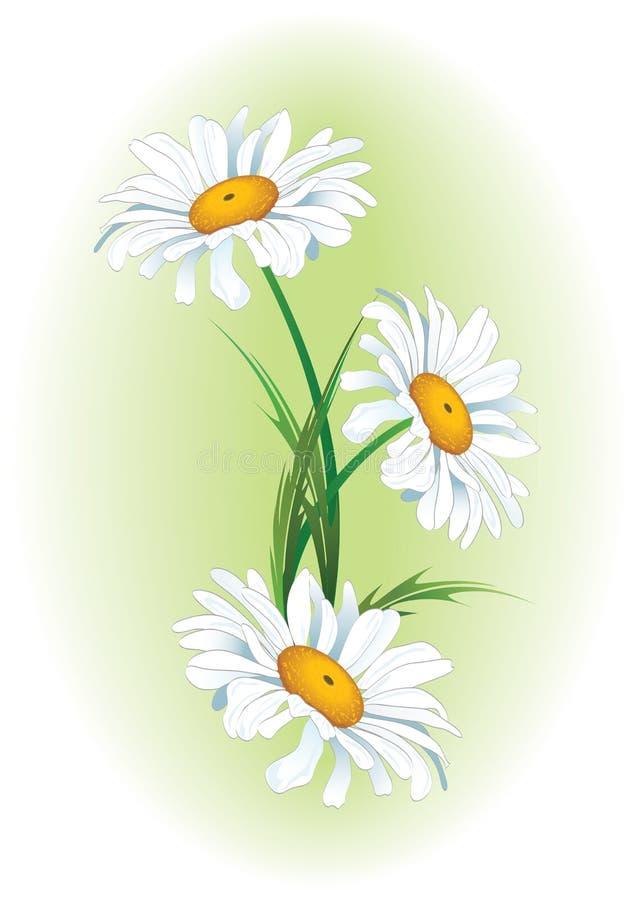 Floral ανασκόπηση απεικόνιση αποθεμάτων
