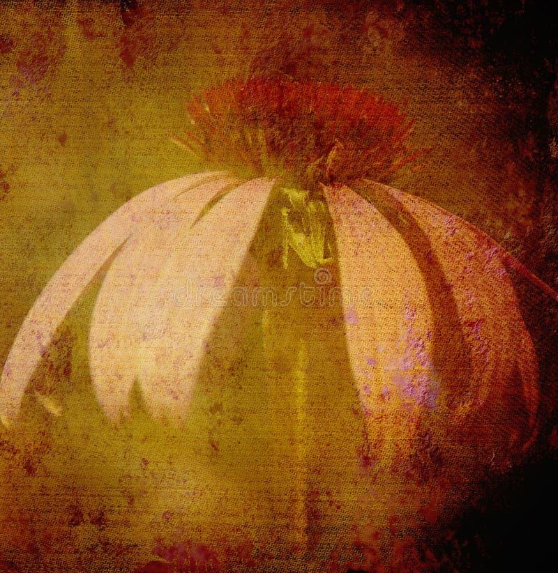 Floral ανασκόπηση Grunge στοκ φωτογραφία με δικαίωμα ελεύθερης χρήσης