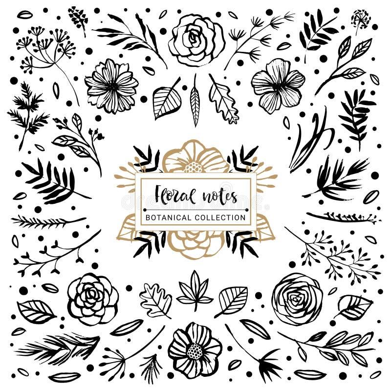 Floral βοτανική συλλογή σημειώσεων Λουλούδια, κλάδοι, και φύλλα διανυσματική απεικόνιση