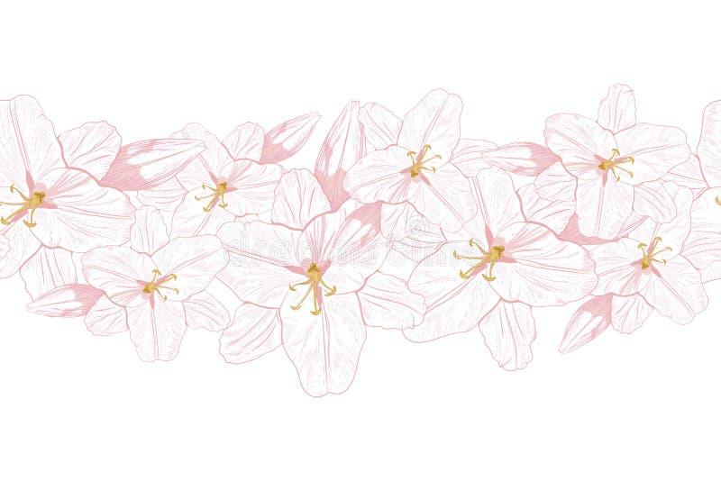 floral διάνυσμα προτύπων Ρόδινοι κρίνοι γραμμών σε ένα τρυφερό υπόβαθρο μεντών Hand-drawn γραμμές περιγράμματος διανυσματική απεικόνιση
