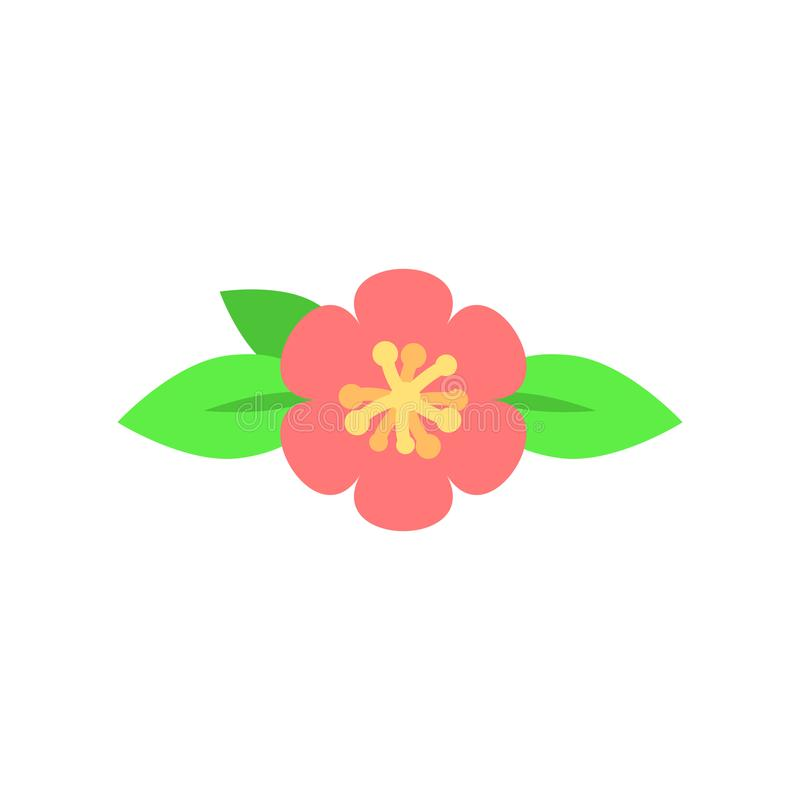 Floral διαιρέτης κειμένων Λουλούδια και φύλλα Σχέδιο ανθοδεσμών για τις γαμήλιες προσκλήσεις ή τις ευχετήριες κάρτες διάνυσμα ελεύθερη απεικόνιση δικαιώματος