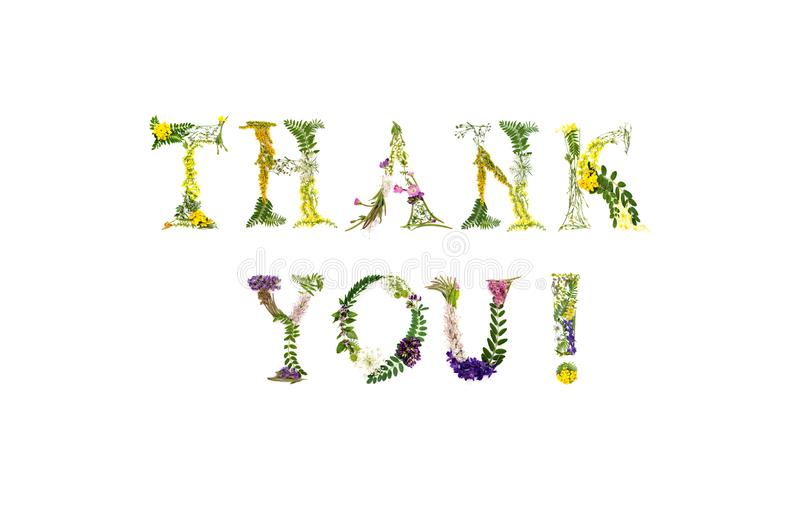 Floral ευχαριστήστε εσείς λαναρίζει στοκ εικόνα με δικαίωμα ελεύθερης χρήσης