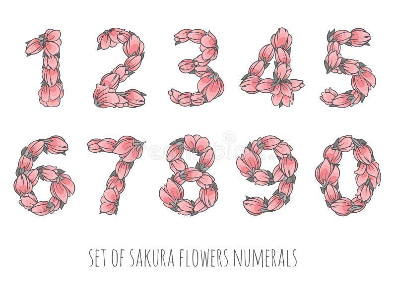 Floral διάνυσμα αριθμών καθορισμένο - λουλούδια sakura κομψοί αριθμοί ύφους απεικόνιση αποθεμάτων