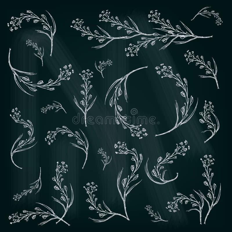 Floral διευκρινισμένο γραφικό σύνολο άνοιξη για το σχέδιό σας ελεύθερη απεικόνιση δικαιώματος