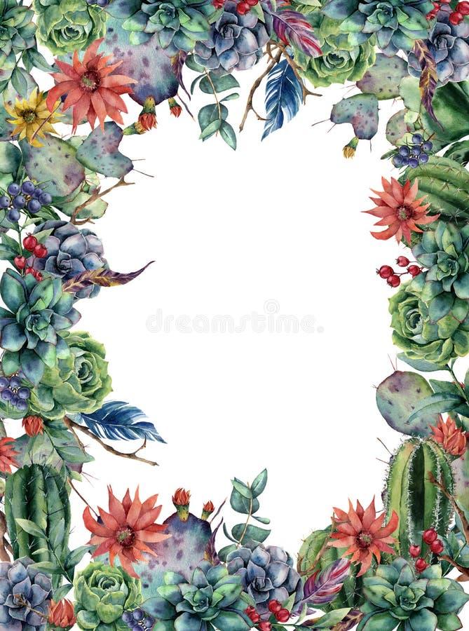Floral κάρτα Watercolor με τον κάκτο Χρωματισμένη χέρι απεικόνιση με ανθίζοντας opuntia, succulent, μούρα, φτερά διανυσματική απεικόνιση