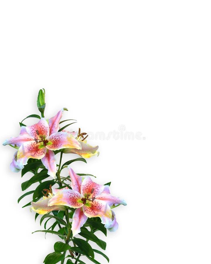 floral κρίνος πρόσκλησης σχεδίου γωνιών διανυσματική απεικόνιση