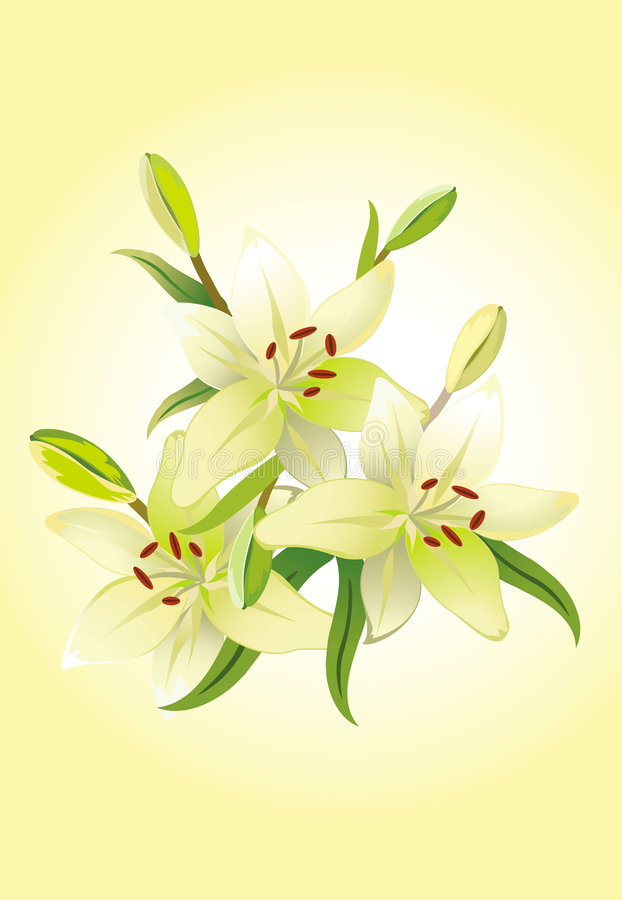 floral κρίνος τρία grunge ανασκόπησης ελεύθερη απεικόνιση δικαιώματος
