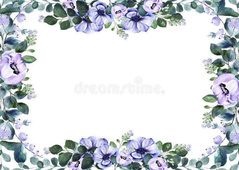 Floral ορθογώνιο πλαίσιο λουλουδιών anemone watercolor premade στοκ εικόνα