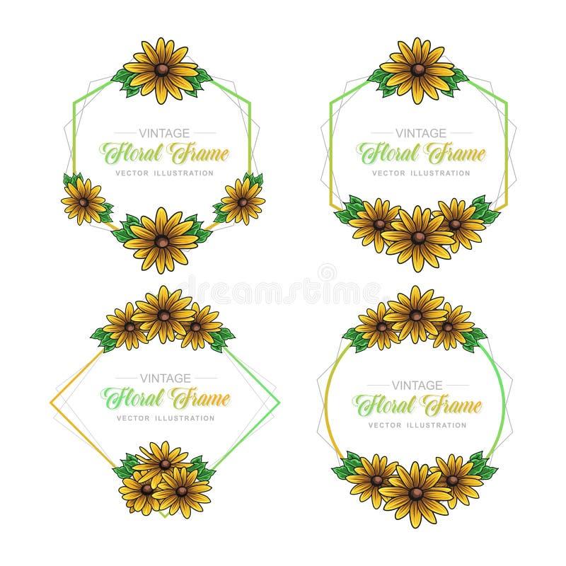 Floral πακέτο ηλίανθων πλαισίων απεικόνιση αποθεμάτων