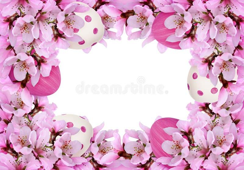 Floral πλαίσιο με τους κλαδίσκους άνοιξη των λουλουδιών ροδάκινων και χρωματισμένων των Πάσχα αυγών απεικόνιση αποθεμάτων